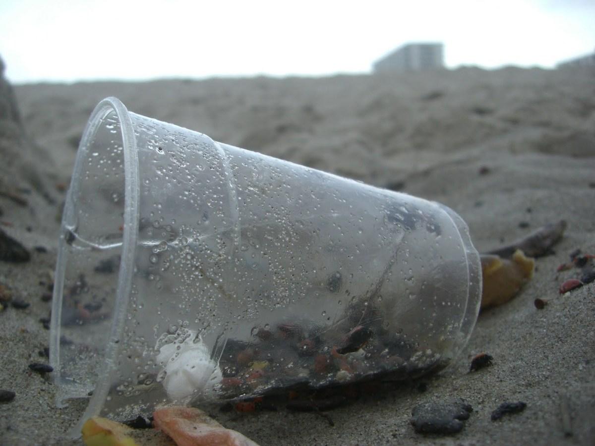 La «plastisphère» s'empare des océans