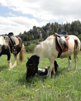 vyjizdka na koni 1 1610e46db4