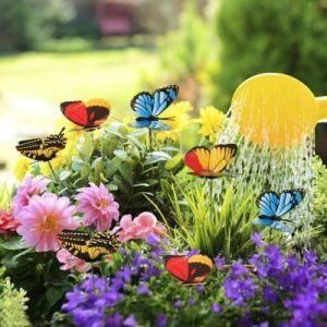 Zápich do květináče 24 ks - motýl