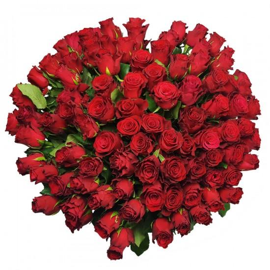 růže rozvoz