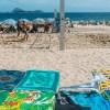 Cinco consejos de viaje si visitas Brasil por primera vez