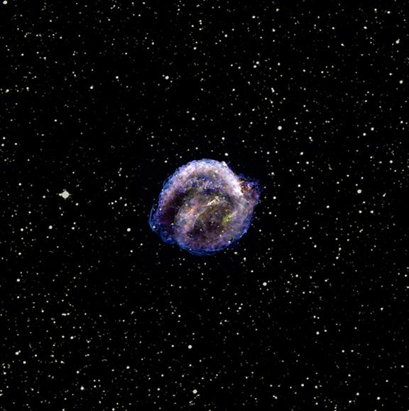 Risultati immagini per immagine stella di keplero