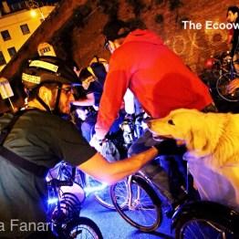 Cagnolone ciclista
