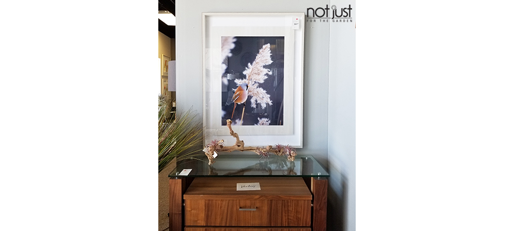 Wall art of a bird and white branch against a black background inside a white frame, mounted to a wall in a home decor setting