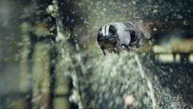 Photo of Spot CGI, para Jack Daniels