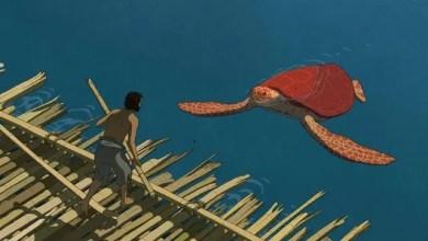 Photo of Trailer del Estreno: La Tortuga Roja. ¡Ya en Cines!