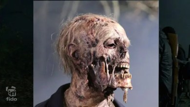 Photo of Breakdown VFX: The Walking Dead