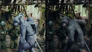 Photo of Trailer y Making of: War for The Planet of The Apes
