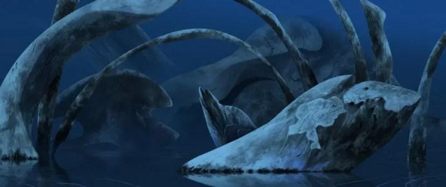Fox And The Whale -Cortometraje de animación-2d-3d-03