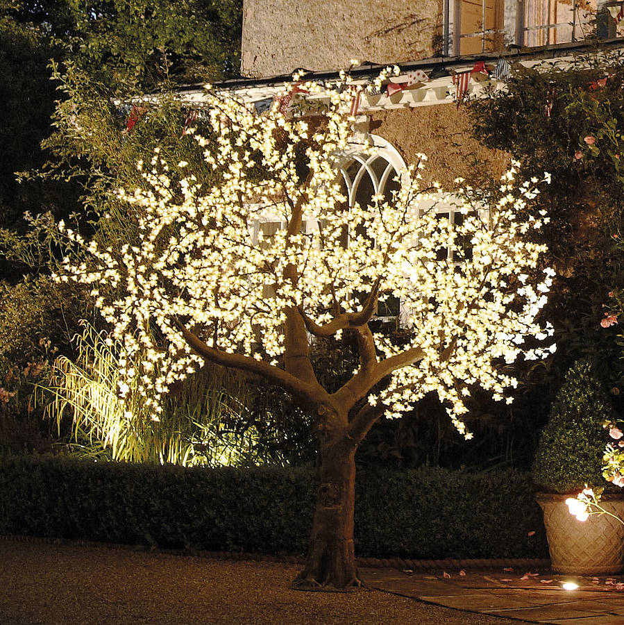 Illuminated Decorative Led Tree By Enchanted Trees