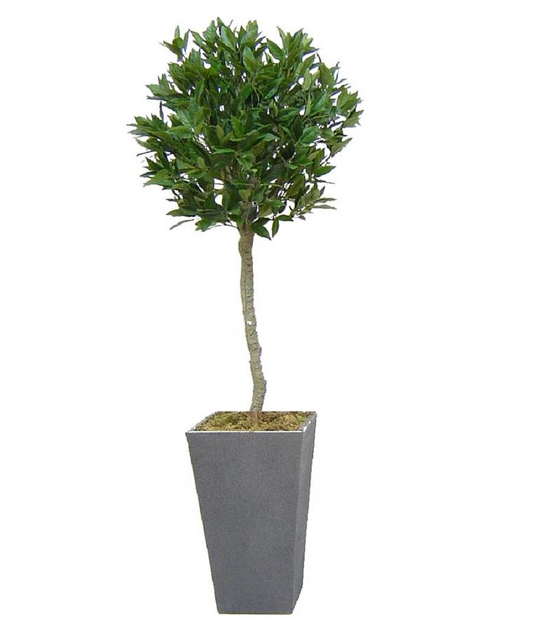 Topiary Tree Artificial