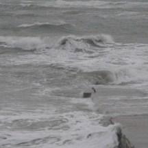 Mer déchaînée - 5 novembre 2013