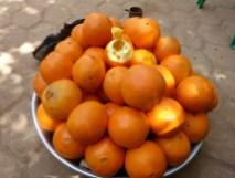 Oranges fraîches.