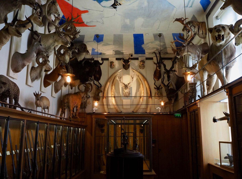 Le Musée de la chasse et de la nature: une perle dans le Marais