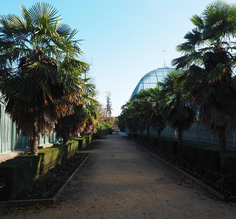 Les serres d'Auteuil : un petit coin de paradis borde Paris