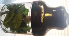 Spinach in chopper