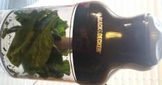 Spinach in chopper