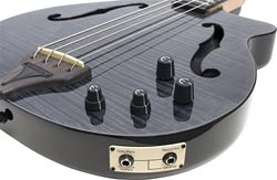 Gear Watch: Epiphone Zenith Bass