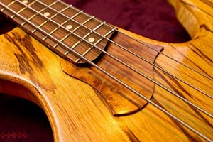 Contest: Win an Ansir Custom Built Bass — Designed Just for You!