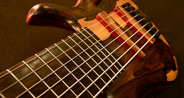 Rewind: Custom Basses, BassGirl is Back, Practice Advice and New Photo Galleries