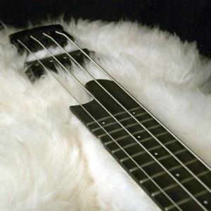 Bass of the Week: Bas-Extravaganza Fluffy