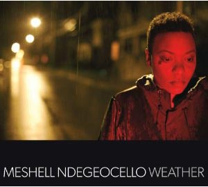 Meshell Ndegeocello Releases Weather