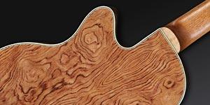 Warwick Rockbass Alien Deluxe 6-string Acoustic Bass Guitar - back