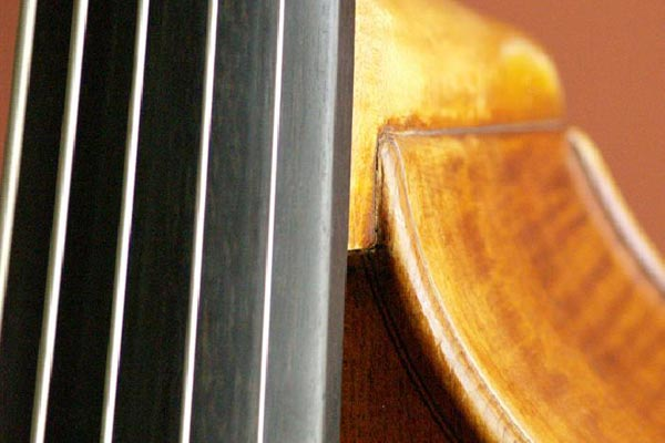 Bass Strings: Tips for Finding the Right Sound