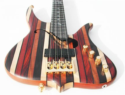 Surine Regency 8-string Rainbow Bass - body