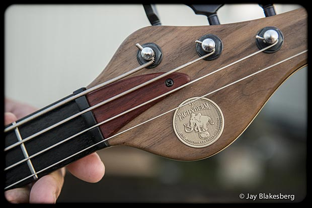 Les Claypool with Personal Pachyderm Prototype Bass headstock