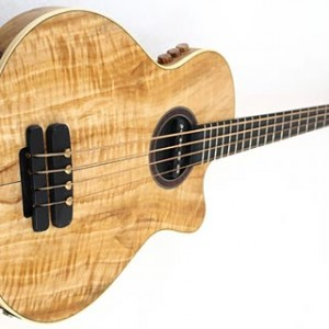 Bass Gear Roundup: The Top Gear Stories for October