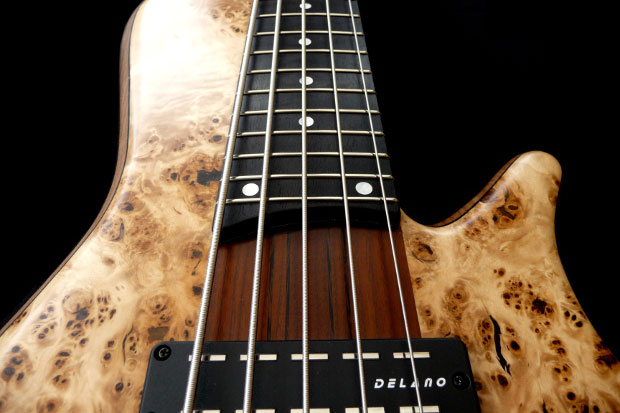 Franz Bassguitars Sirius Bass - Neck Perspective
