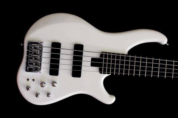 Bass of the Week: Anaconda Crusher Standard CX5