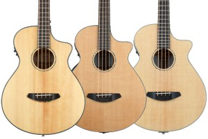 Breedlove Acoustic-Electric Bass Bodies