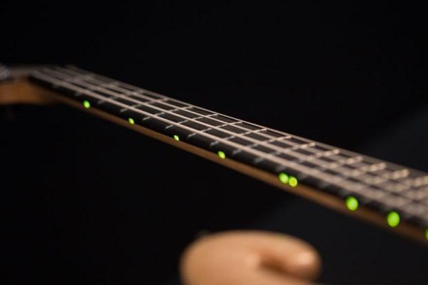 Les Claypool's Pachyderm Bass Maple 4 String Bass LEDs