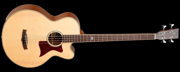 Tanglewood Guitars TW155-A Acoustic Bass Guitar