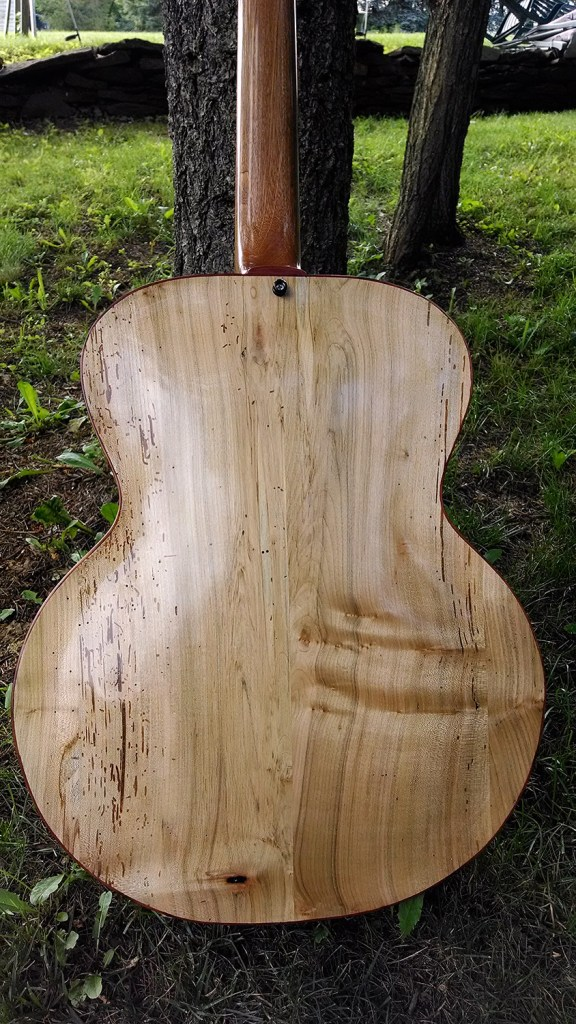 Whitt Guitars 5-String Fretless Archtop Acoustic Bass - Back