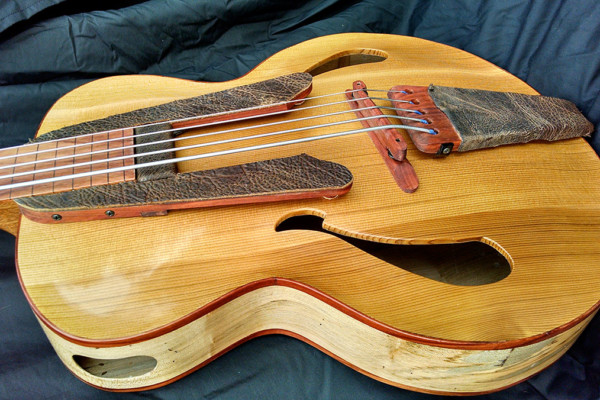 Bass of the Week: Whitt Guitars 5-String Fretless Archtop Acoustic Bass