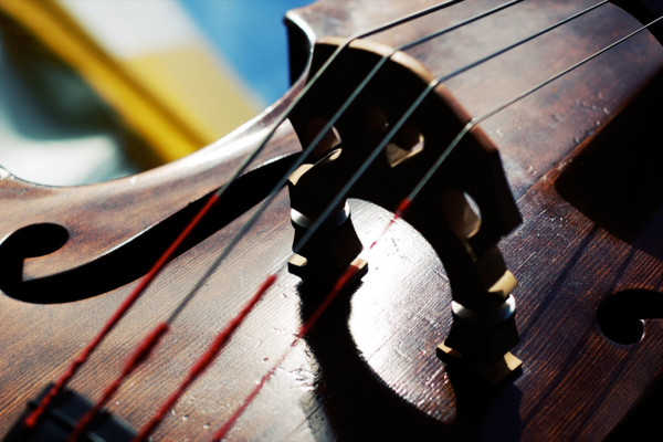 Five Things to Remember to When Moving from Electric to Upright Bass