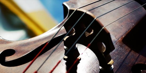 Double Bass closeup