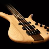 Eve Guitars Announces IONA Bass