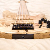 Gear Review: Accuracy Basses Matisse Deluxe 5-String