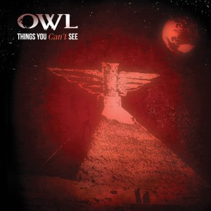 Owl Things You Can't See
