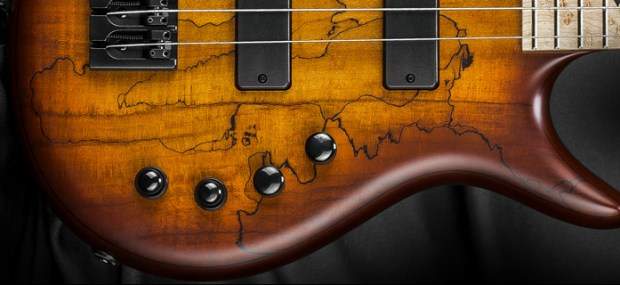 Kiesel Carvin Guitars Icon 2.0 4-string Bass Controls