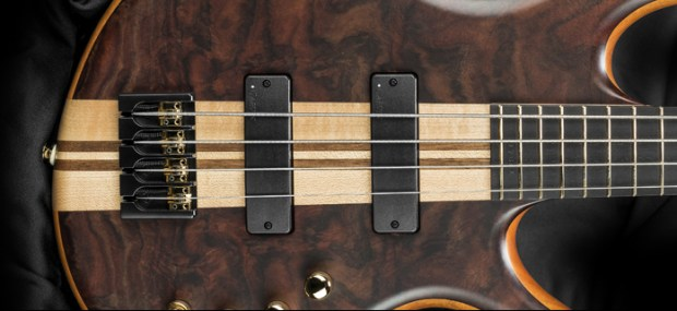 Kiesel Carvin Guitars Icon 2.0 4-string Bass Pickups and Bridge
