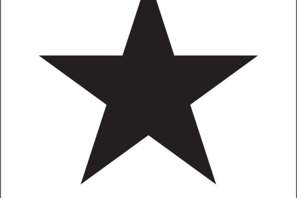 TTB Bassist on Bowie's Last Album