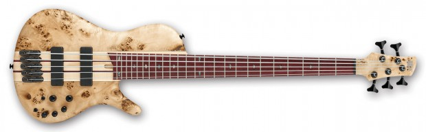 Ibanez Bass Workshop SR Cerro Bass - Natural Finish