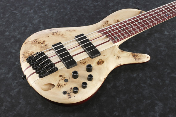 Ibanez Introduces SR Cerro Singlecut Bass