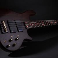 Bass of the Week: Enfield Guitars Lionheart English Rose