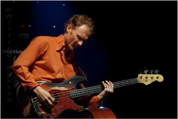 Double Bass vs. Bass Guitar